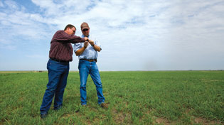 Billy Cook, Ph.D., consulting support research manager (left), and James Locke, soils and crops consultant, discuss forage quality during a recent farm visit.