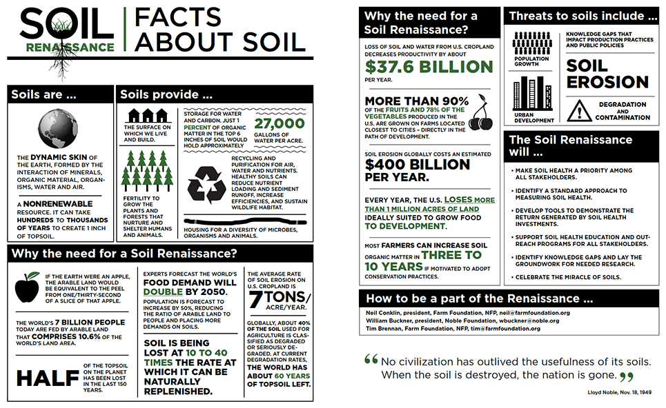 Facts About Soil Infographic