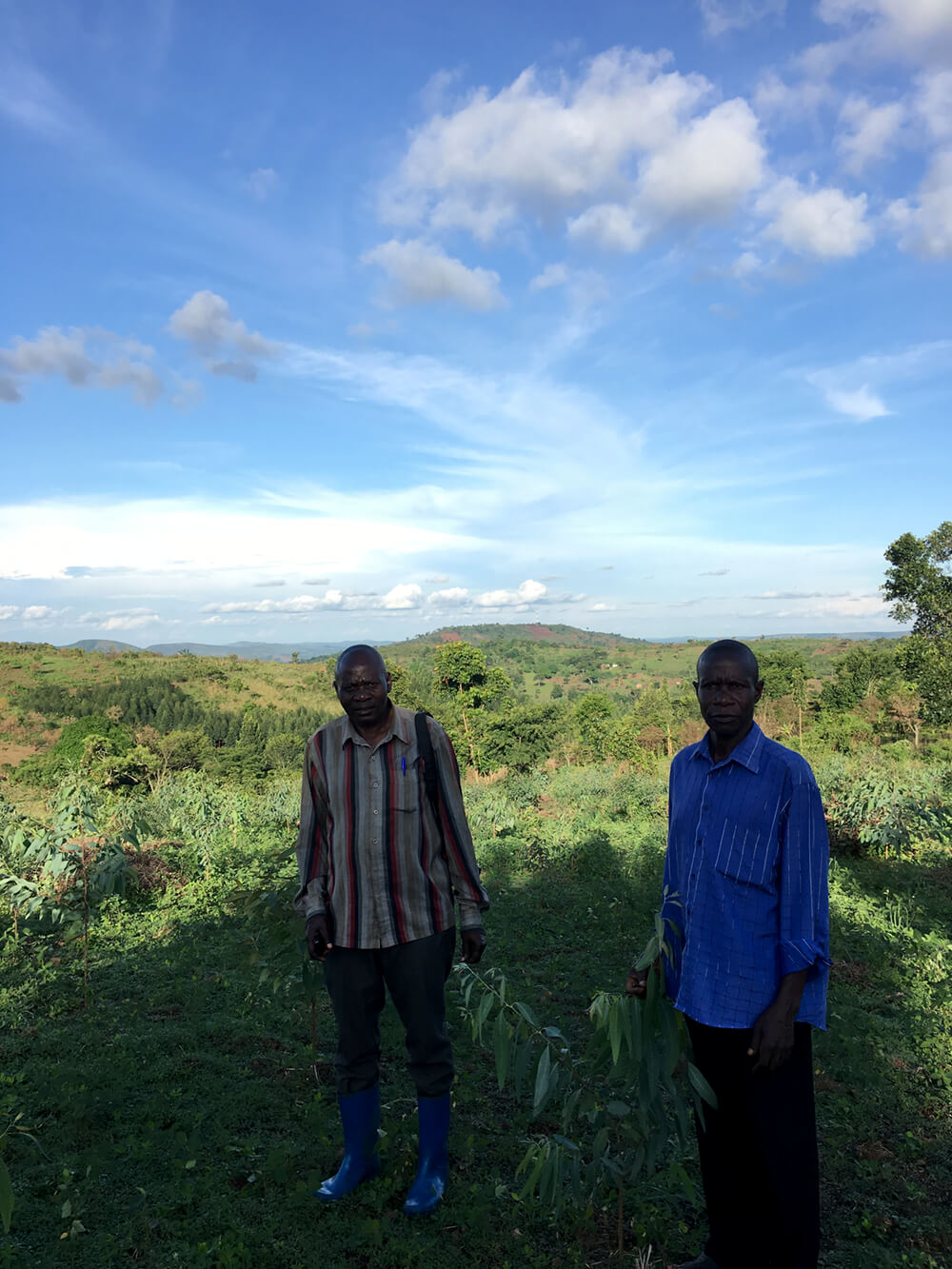 John (left) and Jackson (right) stand by Jackson's young eucalyptus trees.