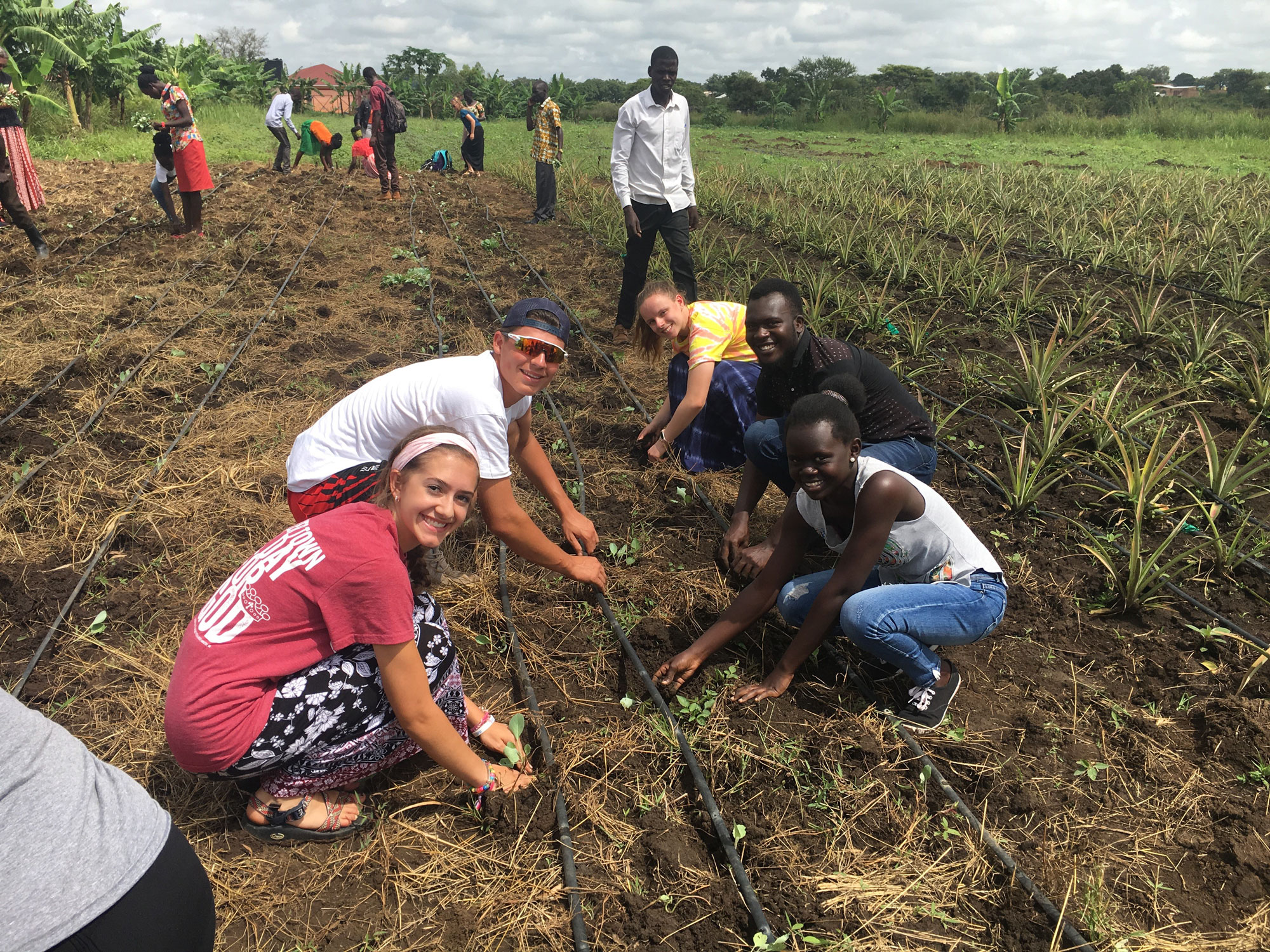 Some of the youth group help transplant cabbages at Bar-Lonyo.