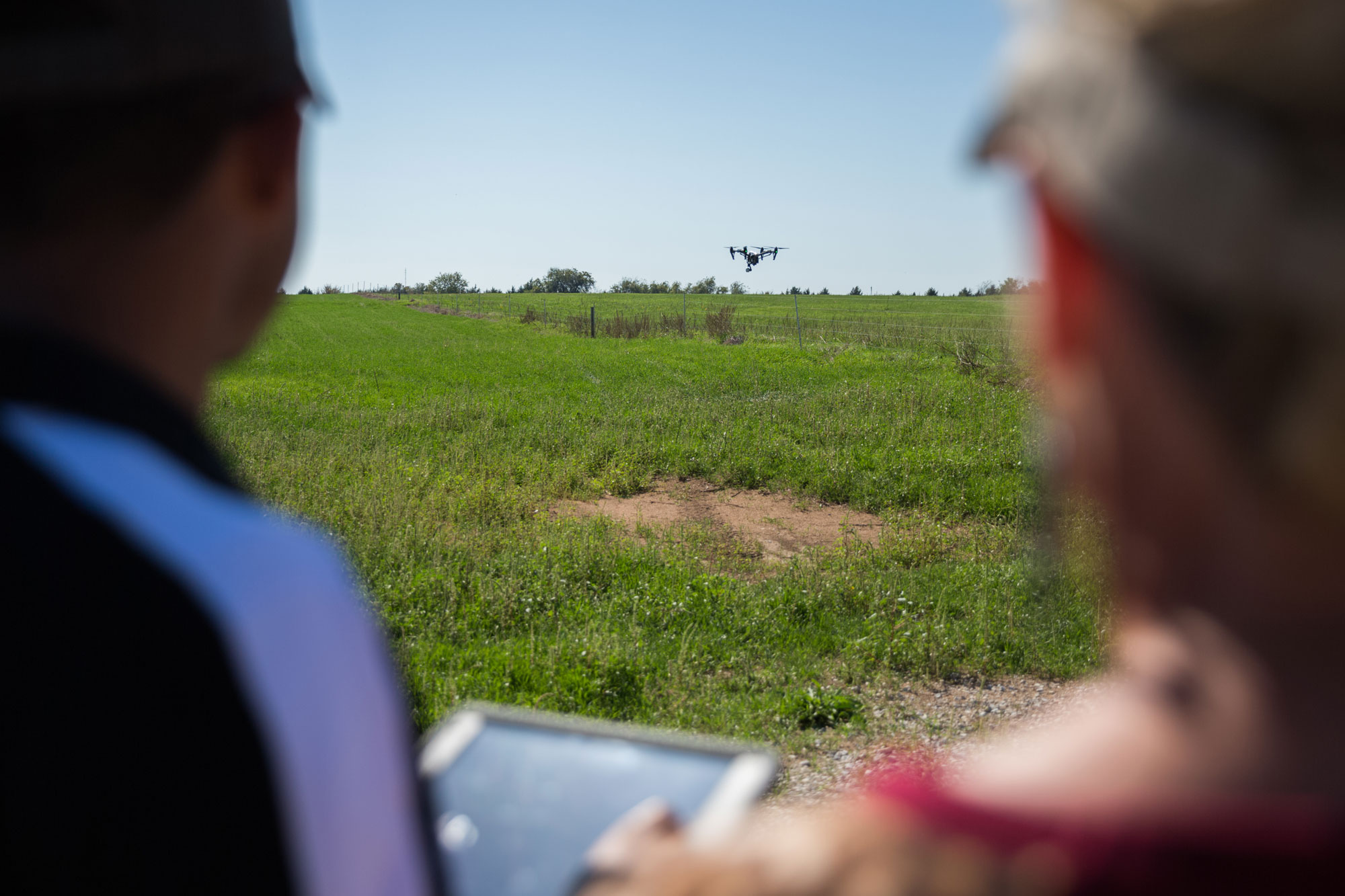 Working with Drones in pasture