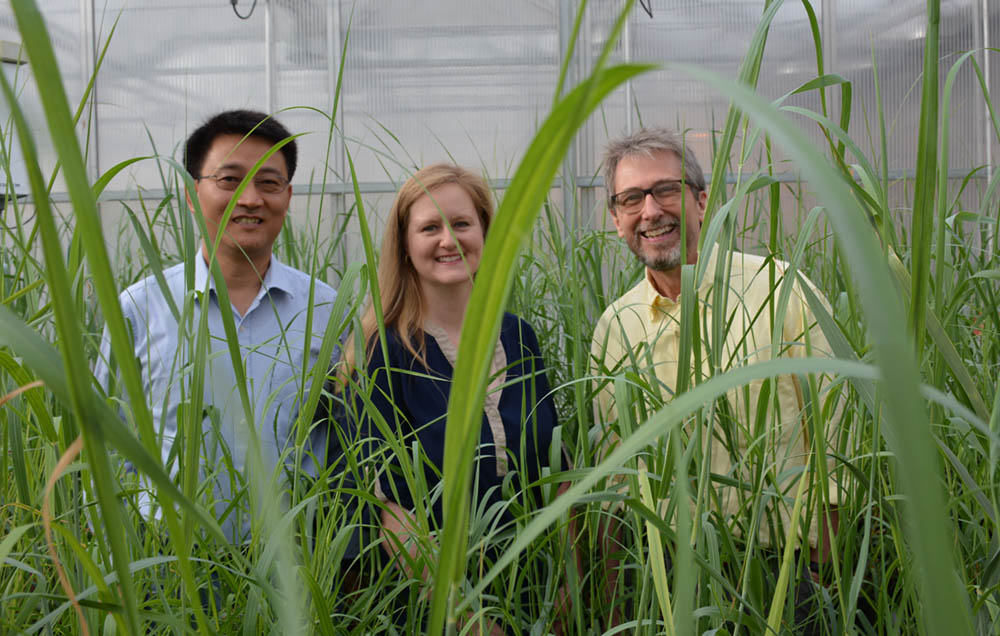 Amy Flanagan, Zengyu Wang, Ph.D. and Rick Nelson, Ph.D.