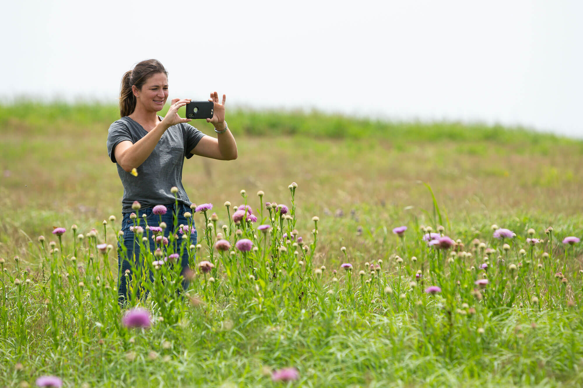 Meredith Ellis taking a photo of her pasture with her smartphone.