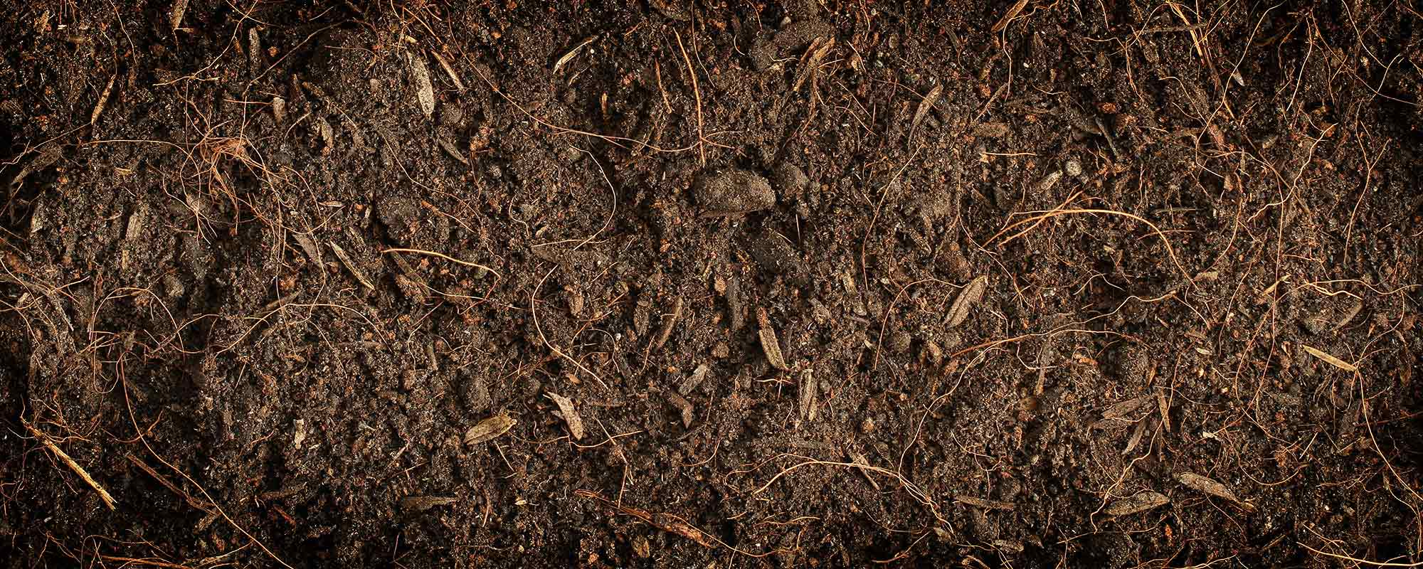 What does organic matter do in soil for What is soil