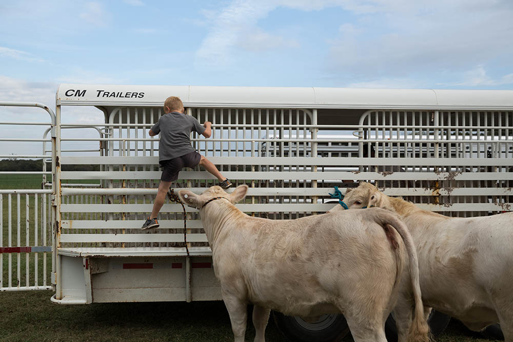 kid playing on livestock trailer