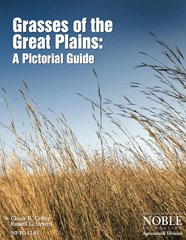 Grasses of the Great Plains: A Pictorial Guide