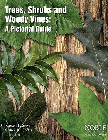 Trees, Shrubs and Woody Vines: A Pictorial Guide