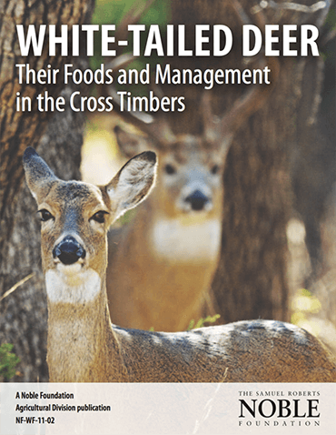 White-Tailed Deer: Their Foods and Management in the Cross Timbers