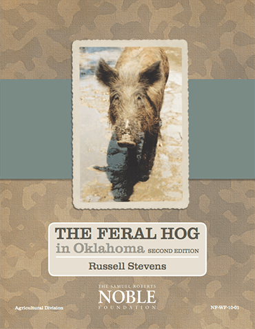 The Feral Hog in Oklahoma