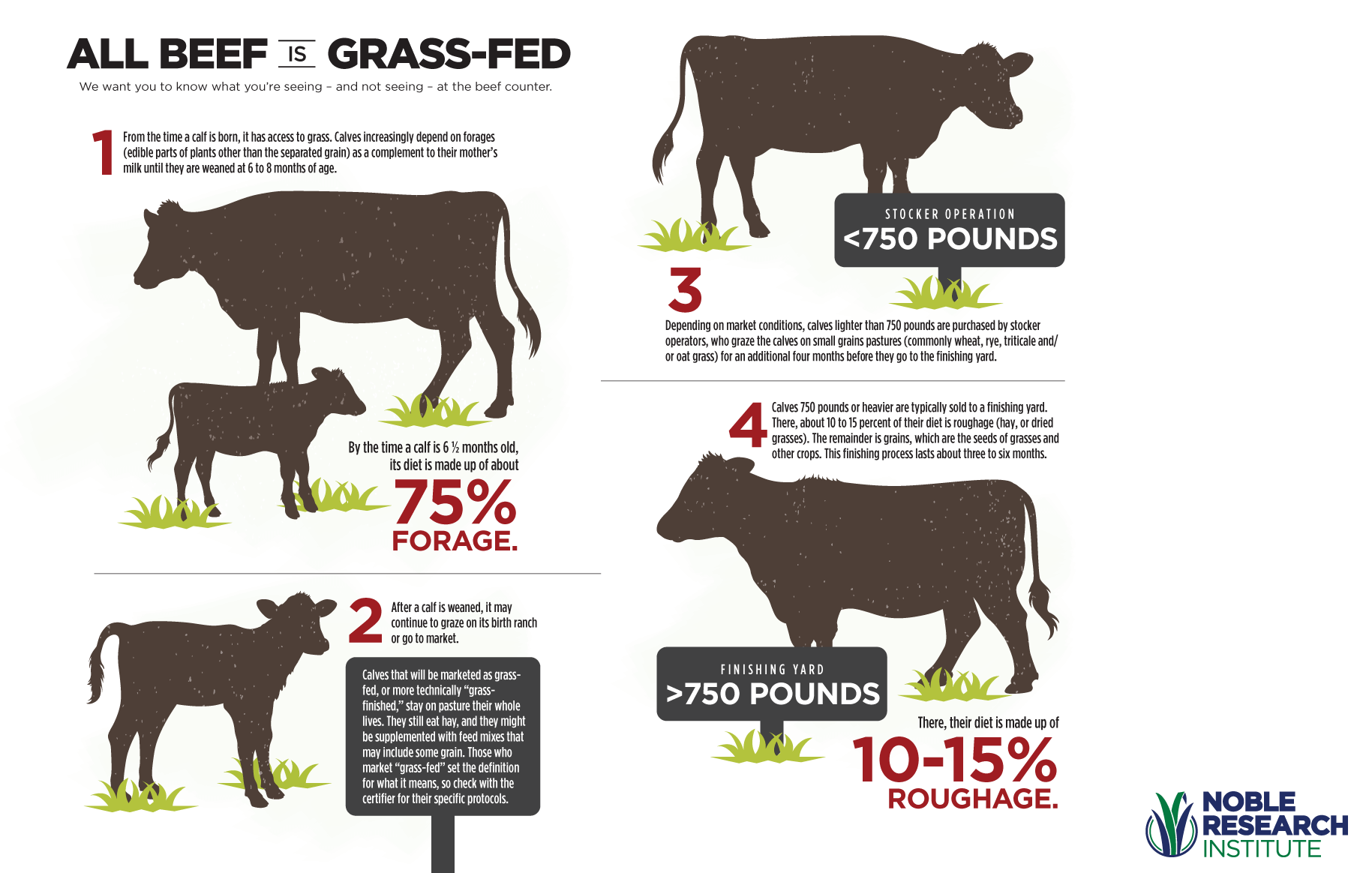 All Beef is Grass-fed infographic