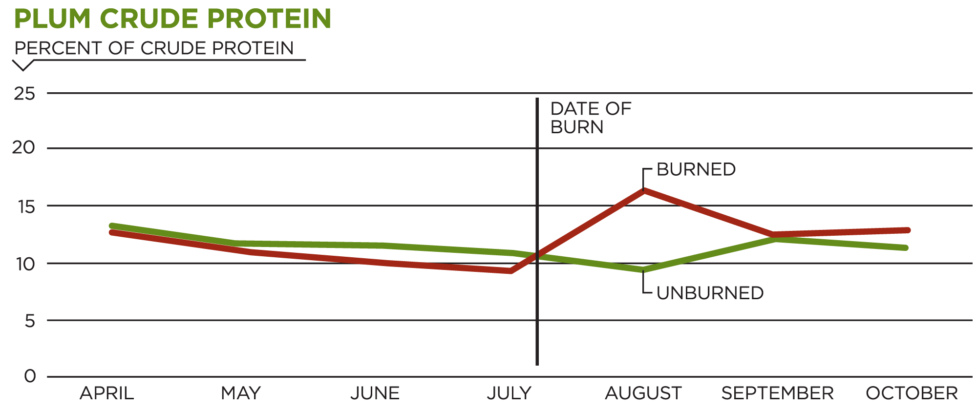 Plum Crude Protein Chart showing differences in crude protein in plants before and after growing season prescribed burns.