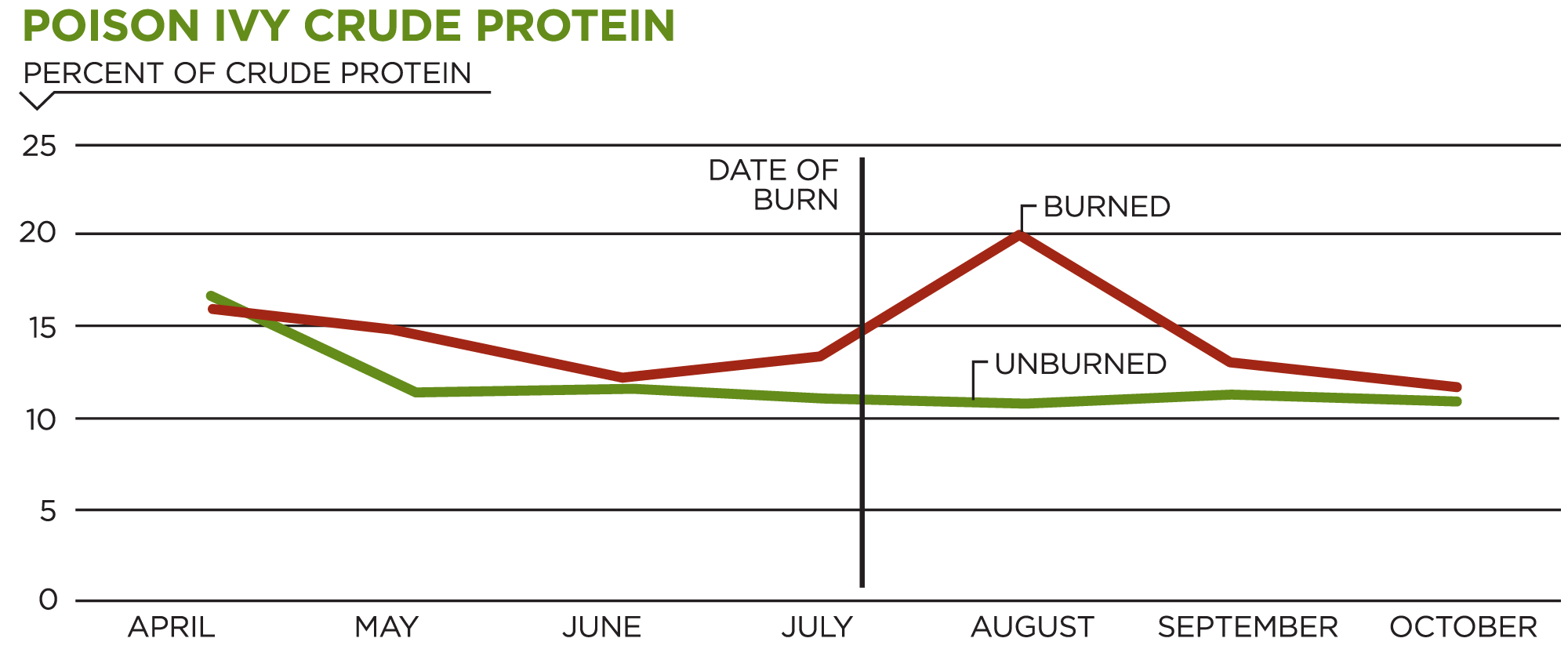 Poison Ivy Crude Protein Chart showing differences in crude protein in plants before and after growing season prescribed burns.