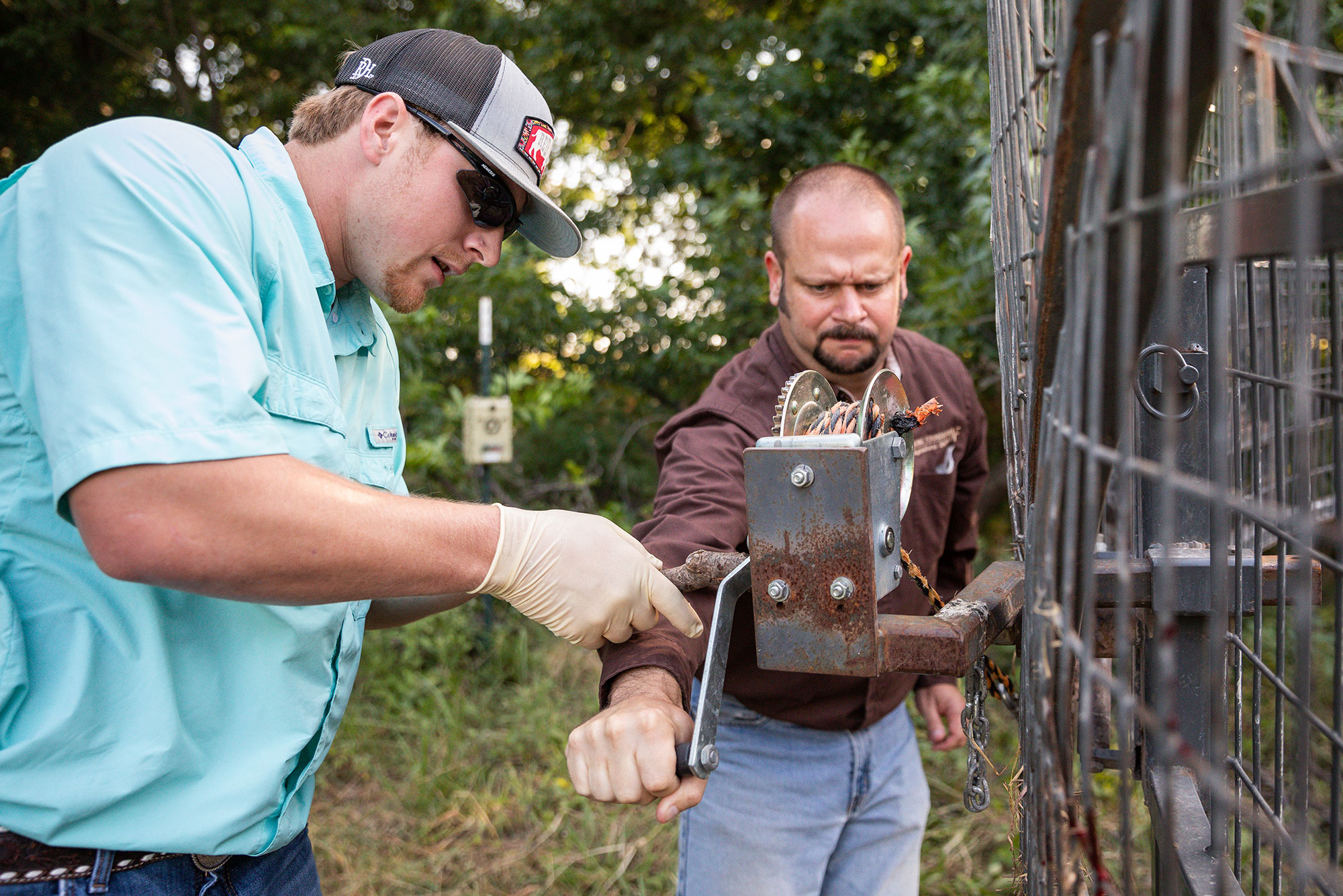 Ag Consultant and Summer Scholar work with a Boar Buster trap