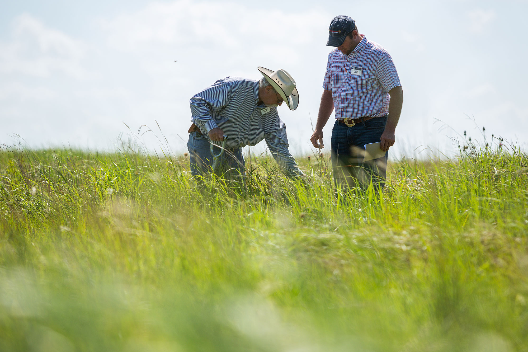 Producer and consultant examine a pasture