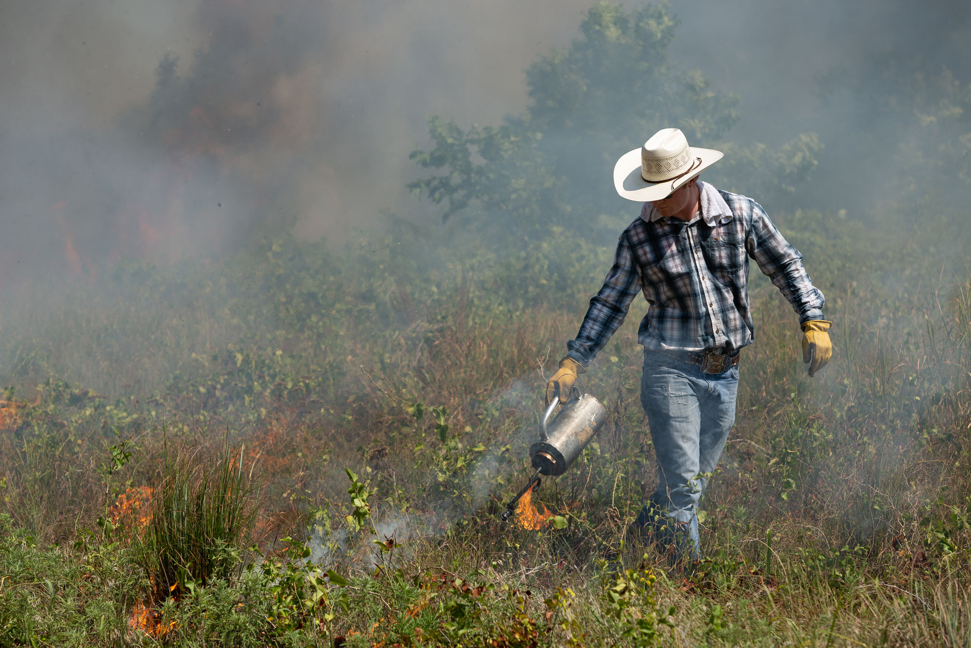 Land manager conducting a prescribed burn