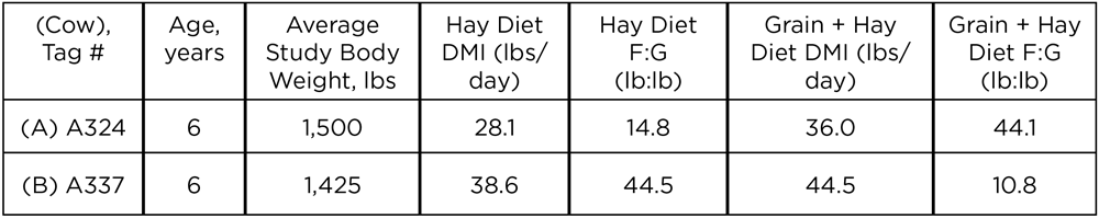 Inforgraphic table showing dry matter intake and feed:gain ratio from two cows