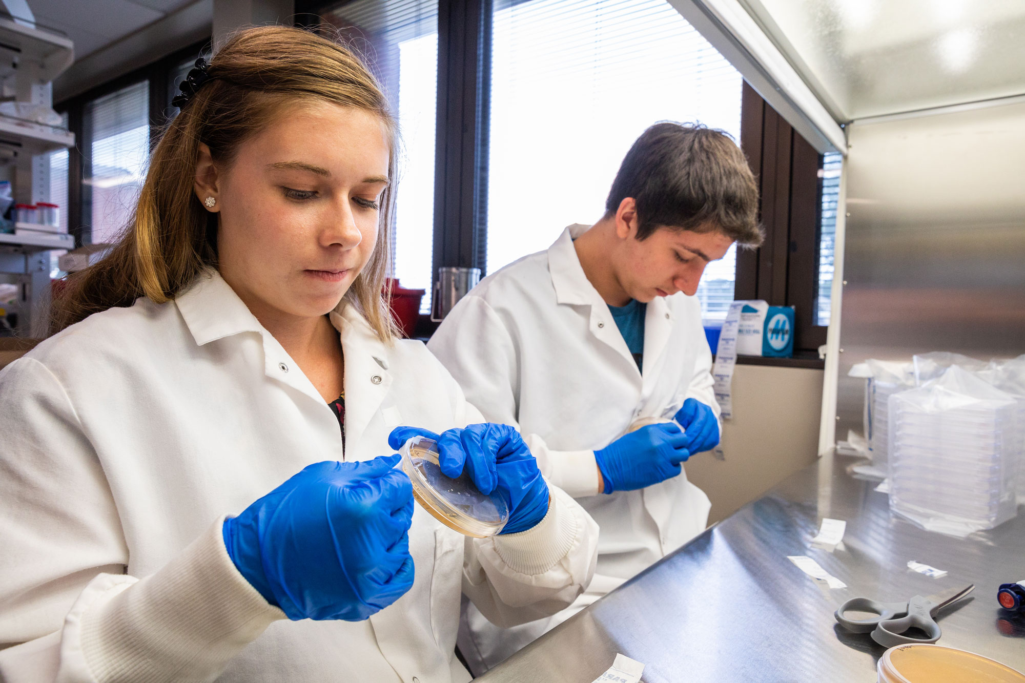 Kaylynn Ashby, a 2018 plant scholar and Cody Burton, research technician, culture bacteria in one of Noble's research labs as part of Kaylynn's scholar project.